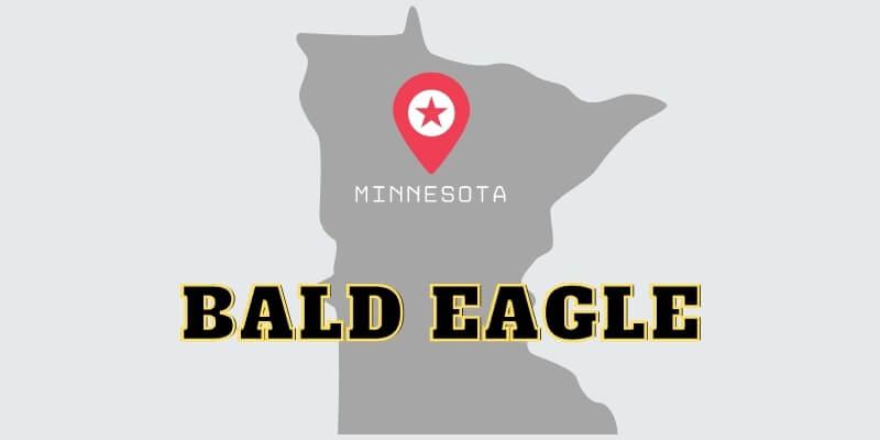 Bald Eagle Garage Door Repair