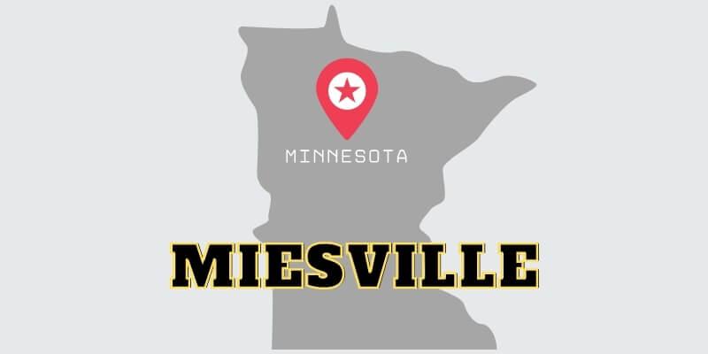 miesville garage door repair